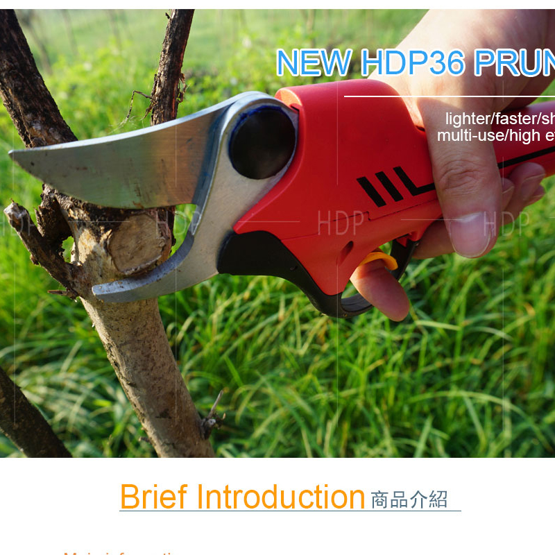 Secateurs Scissors Pruning CE HDP36 Electric