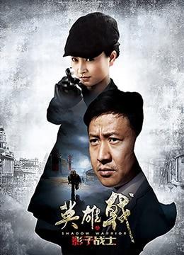 《英雄戟之影子战士》2014年中国大陆剧情,战争电视剧在线观看