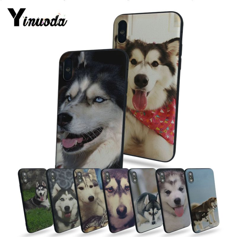Yinuoda Alaskan Malamute <font><b>Siberian</b></font> <font><b>husky</b></font> dog Top Detailed Popular Phone case For Apple iphone 7 7plus X 8 8plus 6s 6 6plus 5 5s image