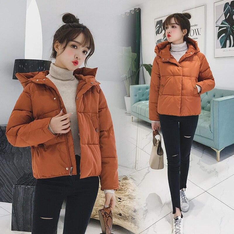 inverno curto algodão acolchoado casaco feminino outono cor inverno parka gola