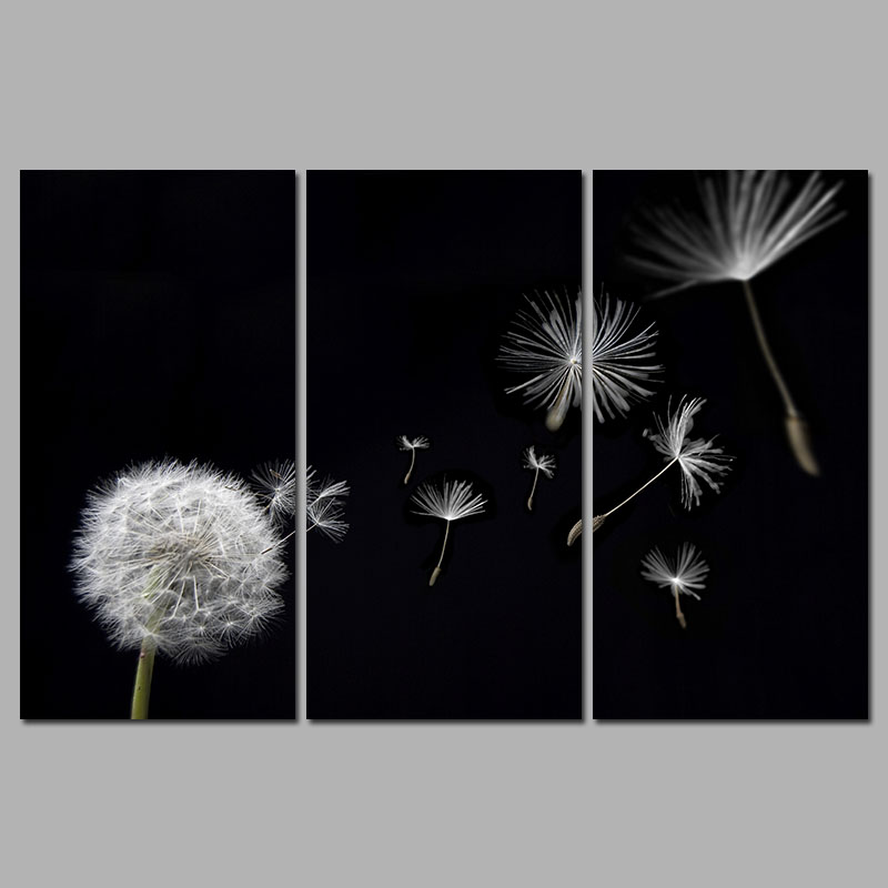 dandelion flower flying black and white decoration canvas paintings print wall art pictures for. Black Bedroom Furniture Sets. Home Design Ideas