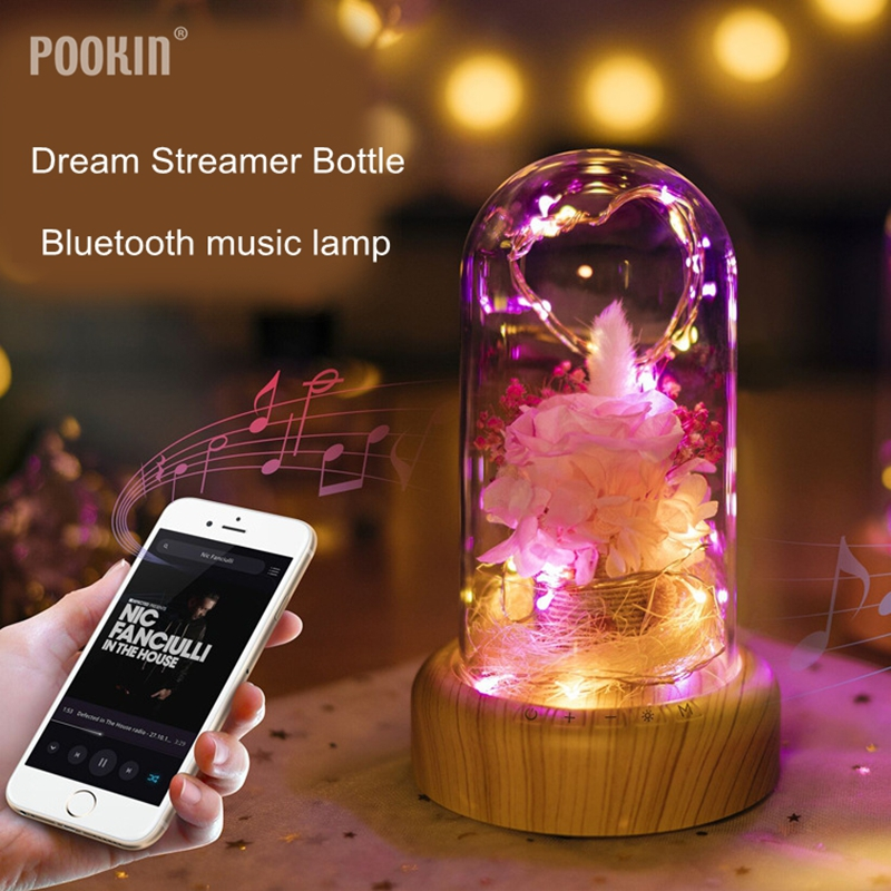 Creative Dream Streamer Bottle Bluetooth music Lamp Christmas landscape Immortalized flower landscape for children and friends led night lamp decorate dream bluetooth voice speaker christmas ever fresh flower creative music box rechargable desk light gift