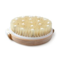50pcs Body Brush Exfoliating Shower Brush for Skin Care Best for Massage Removing Dead Skin Lymphatic Drainage Achieve Healthy