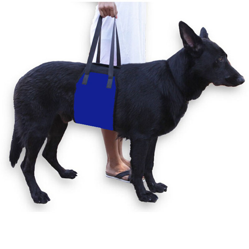 Dog Lift Harness Support Sling Helps Dogs With Weak Front or Rear Legs  Stand Up Get Into Cars Best Alternative to Dog Wheelchair