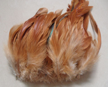 New Arrival! 200Pcs/Lot  Beautiful After Disinfection ecru Rooster Feathers 4-6inch FREESHIPPING