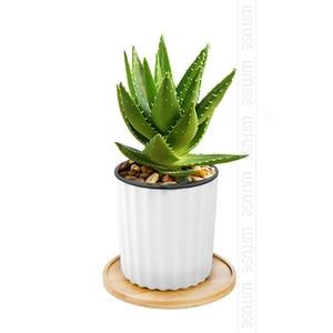 Image 2 - Natural bambu redondo quadrado tigelas placas para suculentas cerâmicas vasos de flores bandejas base jardim decoração para casa artesanato
