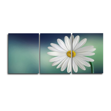 Laeacco 3 Panel White Flower Daisy Wall Artwork Pictures Garden Posters and Prints Canvas Paintings Home Living Room Decoration