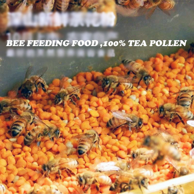 free shipping Tea pollen bee food FEED food for bee 500 gsm one pack 2pack lot