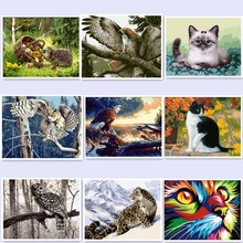 oil painting by numbers paint by number for home decor canvas painting 4050 abstract lion cat eagle tiger owl BM45