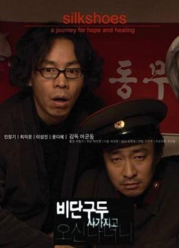 《丝绸鞋》2006年韩国喜剧,剧情电影在线观看