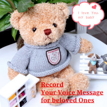 6e3cdf6a6f8 Record   Speak Talking Teddy Bear with 30 Second Audio Memory Storage Personalized  Plush Stuffed Toy