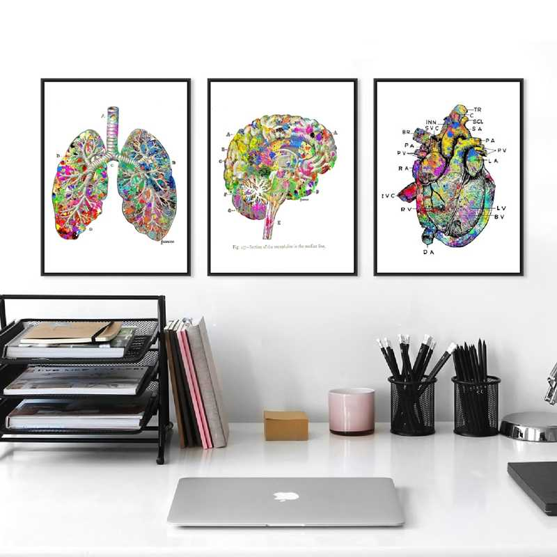 Watercolor Medical Wall Art Prints And Poster , Lung Brain Heart Anatomy Canvas Painting Wall Pictures Doctor's Office Decor