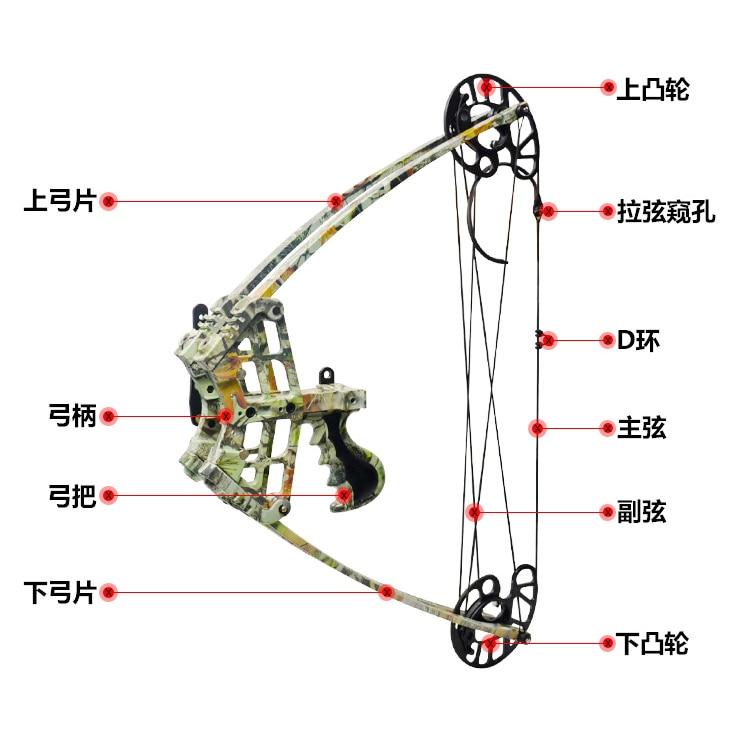 45 libras arco composto 270fps ibo velocidade 04
