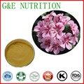Высочайшее Качество Пеларгония Sidoides Экстракт Корня, герань extract powder 20:1 100 г