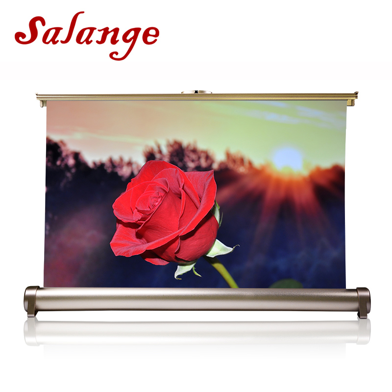 Salange 20 inch Projector Screen 16 9 Desktop Screelastic Portable Front Projection Screen for Business Meeting