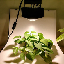 100W CXB3590 CXB2530 Full Spectrum COB LED Grow Light For Plants Indoor Growing Lamp 3500K Flower Fitolampy Lights