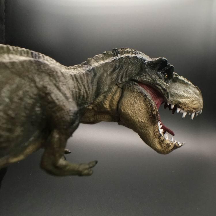 Jurassic Tyrannosaurus Rex Dinosaur Model Large Solid Simulated Dinosaur Toys 30*13*5CM