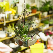 NCYP Diamond Shape Geometric Terrarium Flowerpot Air Plants Succulent Planter Wedding Decoration Box Glass Hanging Flower Pot
