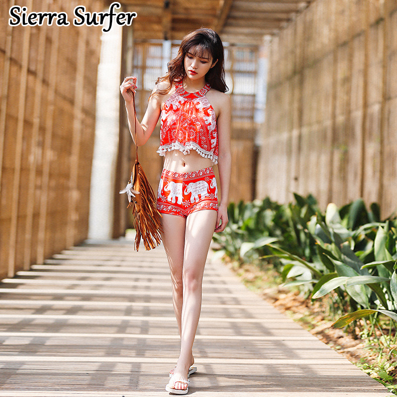 Plus Size Swimwear Woman Bikini Bathing Suit 2018 Clothes Women New Sexy Push Up Three Piece Skirt Underwire Swimsuit Girl Print