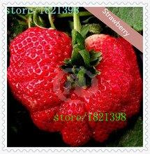 100 шт. большие гигантские красные семена плодов клубники DIY Сад семена плодов растений в горшках, garden supplies, бонсай, дома
