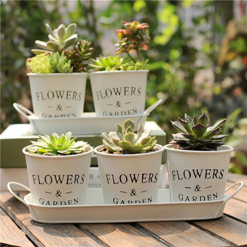 1set White Metal Flower Bucket Nordic Style Creative Succulent Plant Pot Iron Personality Floral Tray Bonsai Decoration Vase in Artificial Dried Flowers from Home Garden