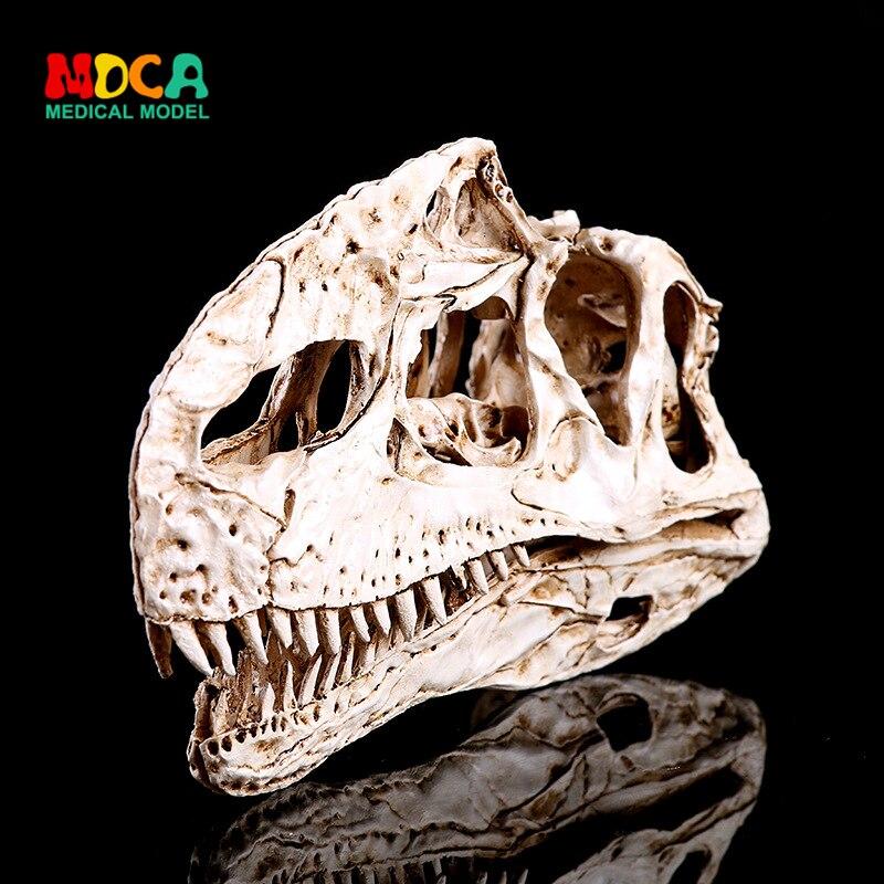 Single ridge bone resin, dinosaur skull skull animal research teaching creativity home decoration KLGT015Single ridge bone resin, dinosaur skull skull animal research teaching creativity home decoration KLGT015