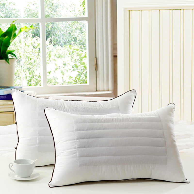 Pillow/ Throw pillows /100% Feather Silk/light Pillow/buckwheat dual-purpose Pillow super soft wool fabrics