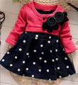 Fashion Baby Girl Dress New 2017 Long Sleeve Toddler Dresses For Girl Cute Kids Spring Autumn Children Clothes MG2200