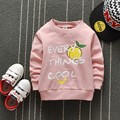 Boys Casual New Autumn Sweatshirt Kids Clothes O-neck Long Sleeve Hoody Letter Fruit Print Tops Fashion Children Sudaderas Ninos