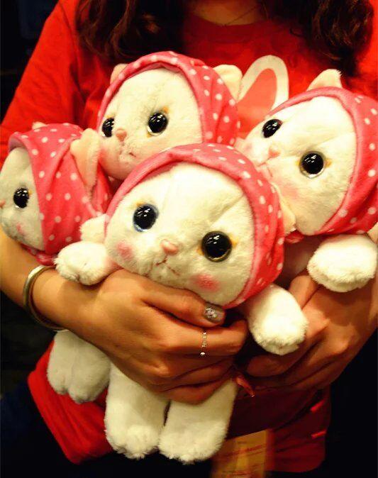 For Valentine S Day Cat Toys : Super cute pc cm cartoon kerchief headband choo