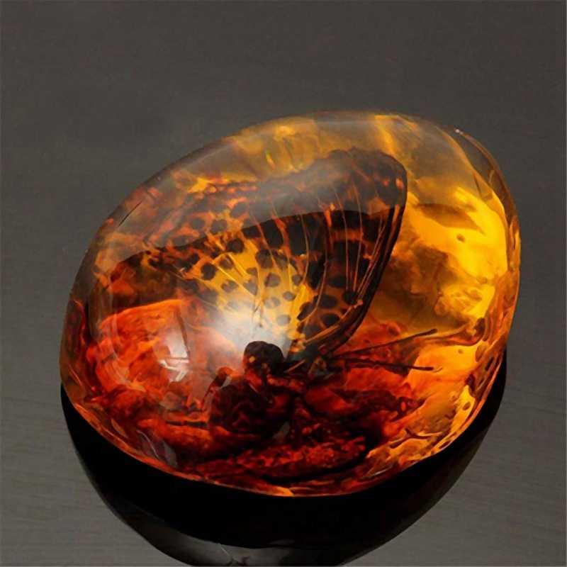 Lber Fashion Alami Serangga Amber Batu Permata Ornamen Orisinalitas Kalajengking Butterfly Spider Crab Dekorasi dengan Lubang Pendan