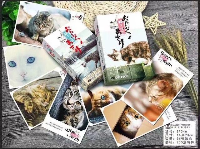 Original 36pcs lot animal world greeting cards give you a cat 36pcs lot animal world greeting cards give you a cat creative m4hsunfo