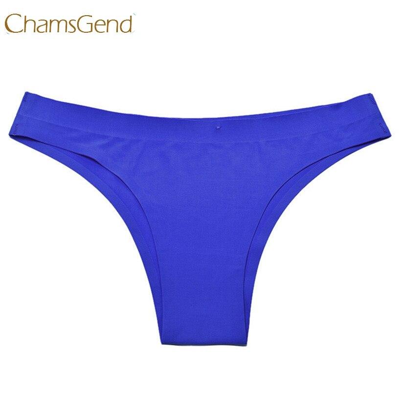 0ef32d4e1e327 Chamsgend Newly Design Women Seamless Sexy Underwear Briefs Comfy Lingerie  Wear cute & low beauty July23 Drop Shipping-in women's panties from  Underwear ...