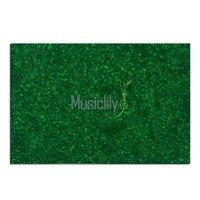12X17 Inch Blank Pickguard Material For Pickguard Custom 4Ply Pearl Green