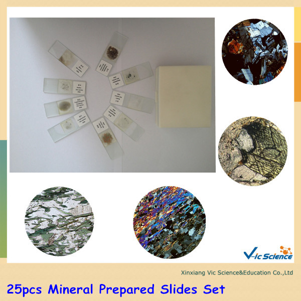 Free Shipping 25pcs Mineral Prepared Slides Set 18pcs blood test prepared slides set