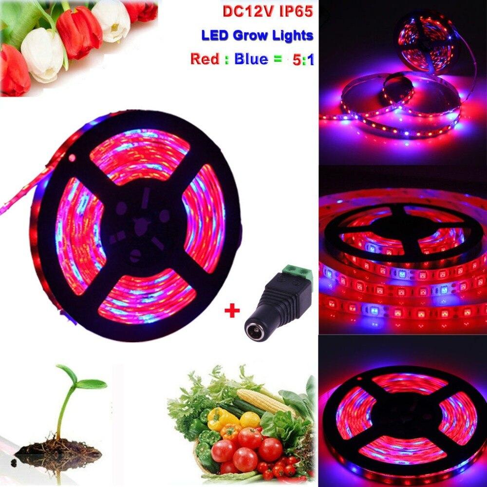 Led Grow Light 1M-5M 5050 LED Strip Grow Light Spectrum Aquarium Indoor Hydroponic Plant Lamp Not including DC 12V Power Supply