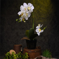 Artificial Flower Plant Potted Bonsai Best Gifts Fake Butterfly Orchid Flowers Plants Wedding Decor Ornaments For