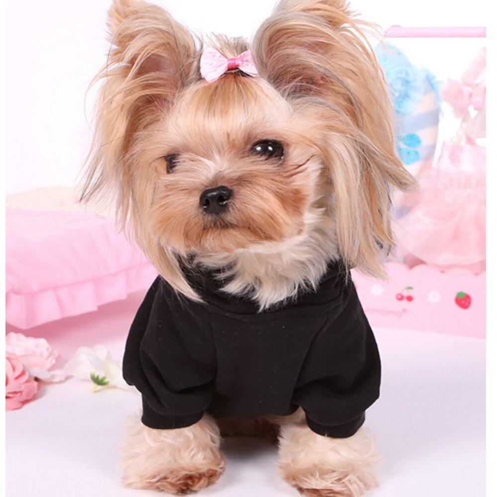 Cute Yorkie Clothes Wwwtopsimagescom