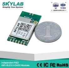 Skylab MT7601 WiFi Module WG209