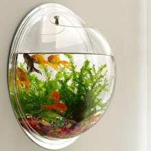Acrylic Fish Bowl Wall Hanging Aquarium Tank Aquatic Pet Supplies Pet Products Wall Mount Fish Tank