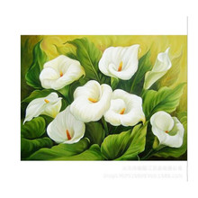 Calla Lily 5d Diy Diamond Painting Embroidery Flower Full Inlay Home Decor