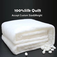 Autumn Winter 100%Silk Quilt Handmade Positioning Applique Spring Summer Silk   Comforter   Stripe Style Cotton Duvet Cover Blankets