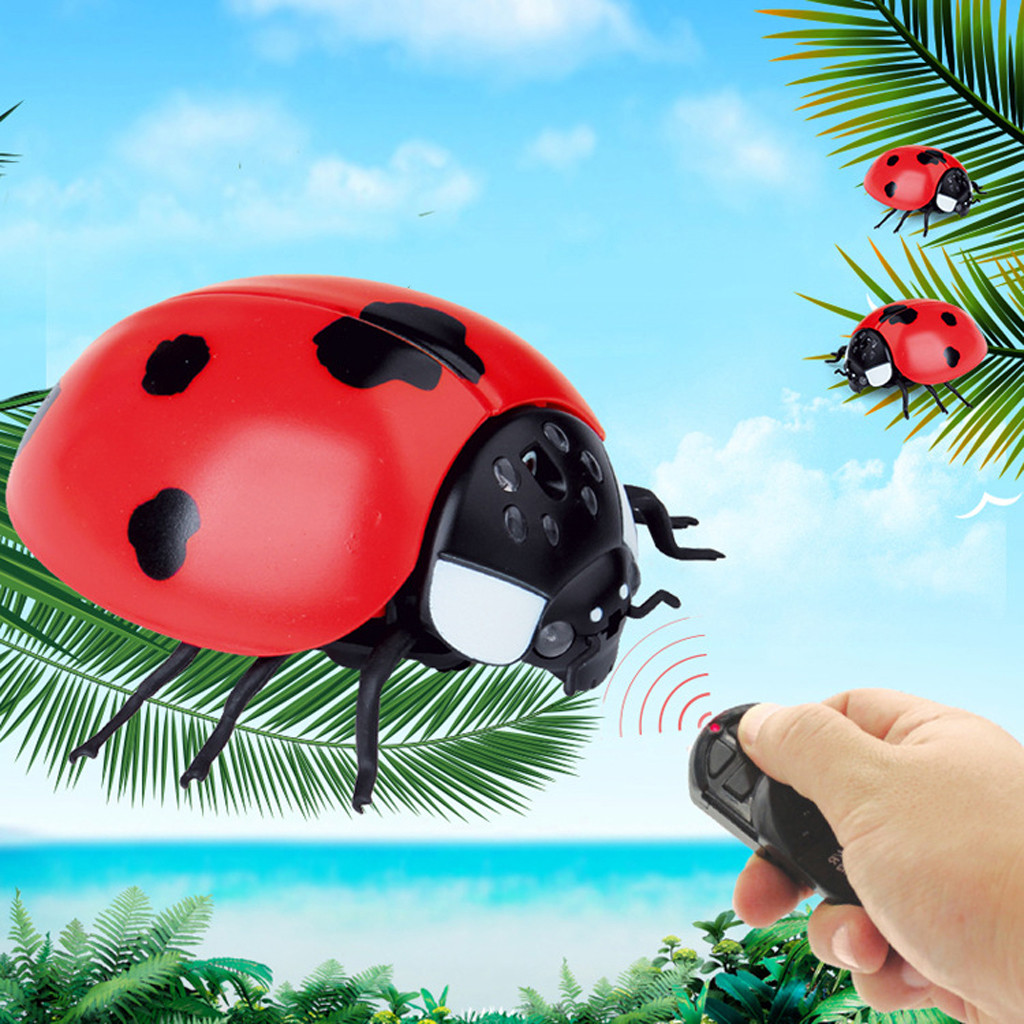 Image 3 - Children Tricky Toys Infrared Induction Electric Remote Control ladybug Toy Gift practical and convenient Remote control toys-in RC Robots & Animals from Toys & Hobbies