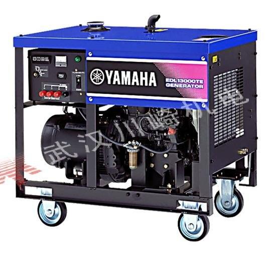 20 kw small diesel generator yamaha EDL26000TE-in Diesel
