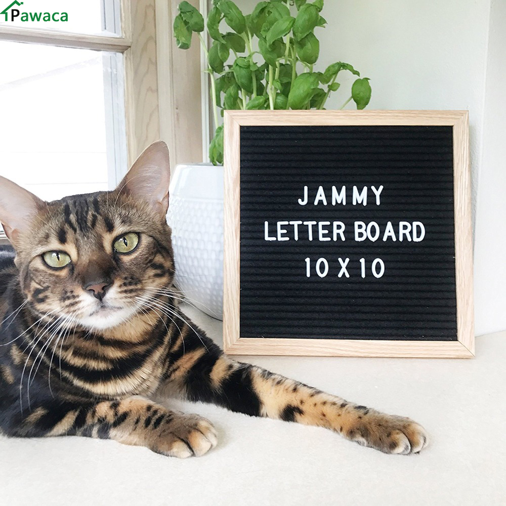Pawaca Letter Board Sign With 290 Changeable White Characters 10 X 10 With Oak Frame And Black Felt New Message Board Sign