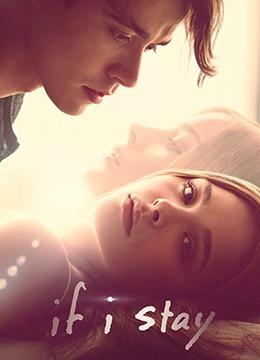 《如果我留下》2014年美国剧情,爱情电影在线观看