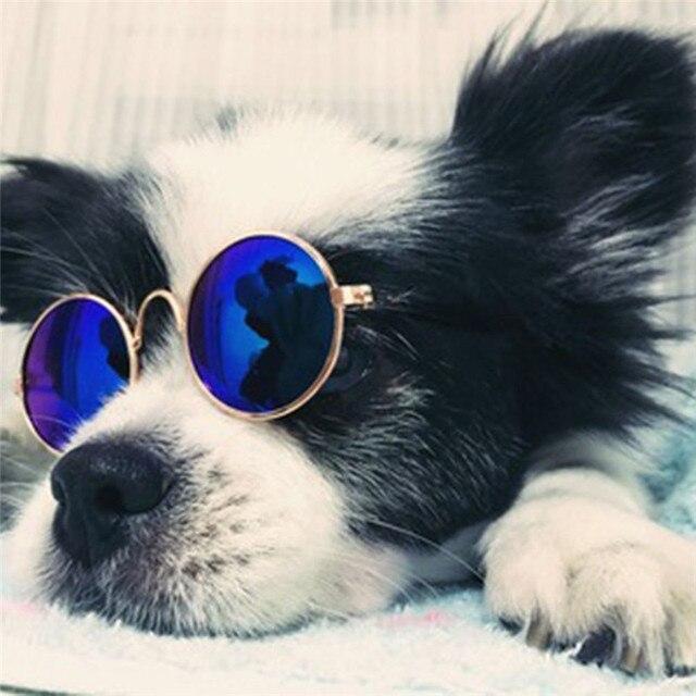 1Pcs Hot Sale Dog Pet Glasses For Pet Products Eye-wear Dog Pet Sunglasses Photos Props Accessories Pet Supplies Cat Glasses 4