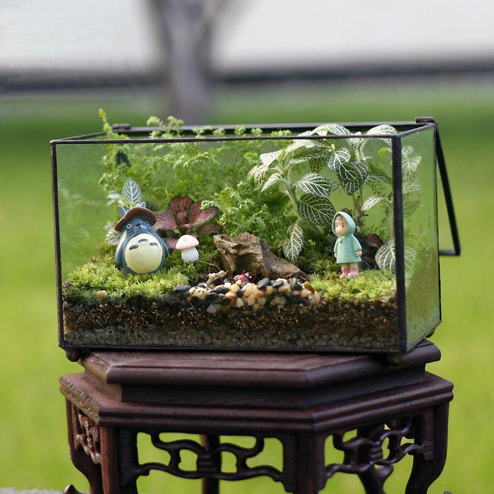Ուղղանկյուն պարզ ապակու երկրաչափական տեռորի տուփի հաբեր Քաղցր Fern Moss միկրո լանդշաֆտ ոտքերով Bonsai Flower Pot
