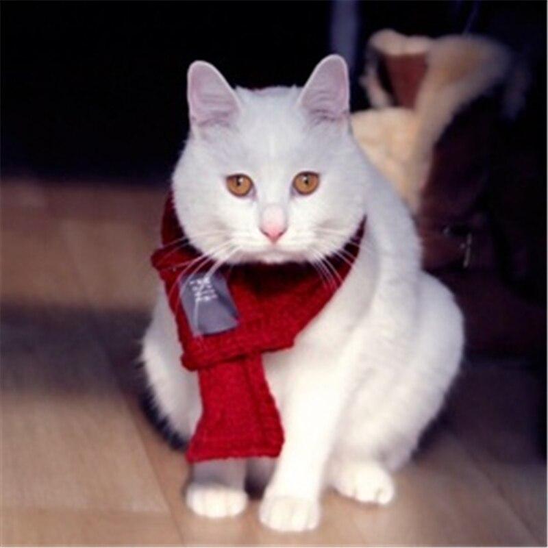 Kutya ruházati kiegészítők Állítható kisállat kutya macska - Pet termékek - Fénykép 3
