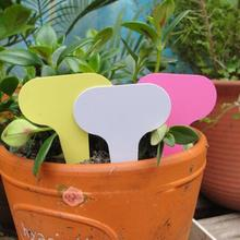Garden Plant Labels plastic fleshy T-tag flower potted gardening planting land card plant label waterproof card 5pcs
